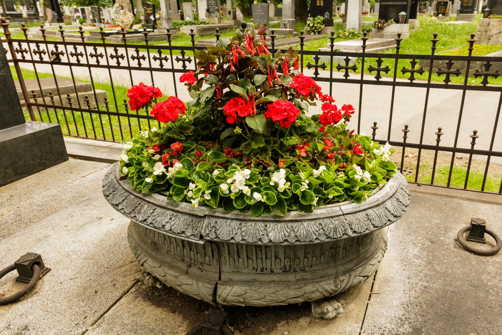 Gruft-mit-grosser-Blumenschale-Sommerblumen-gemischt