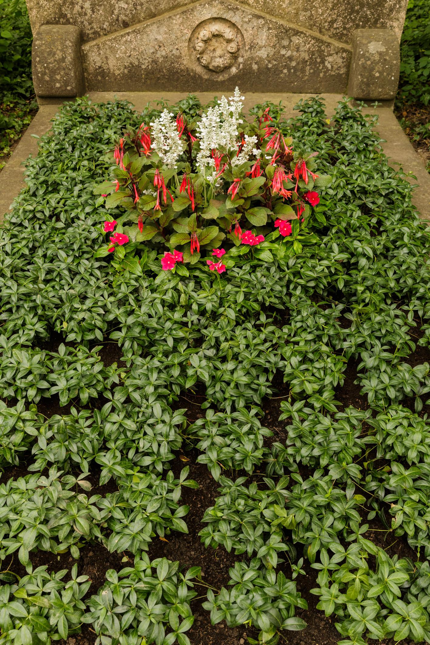 Immergr-ngrab-mit-Teilfl-che-gemischte-Sommerblumen