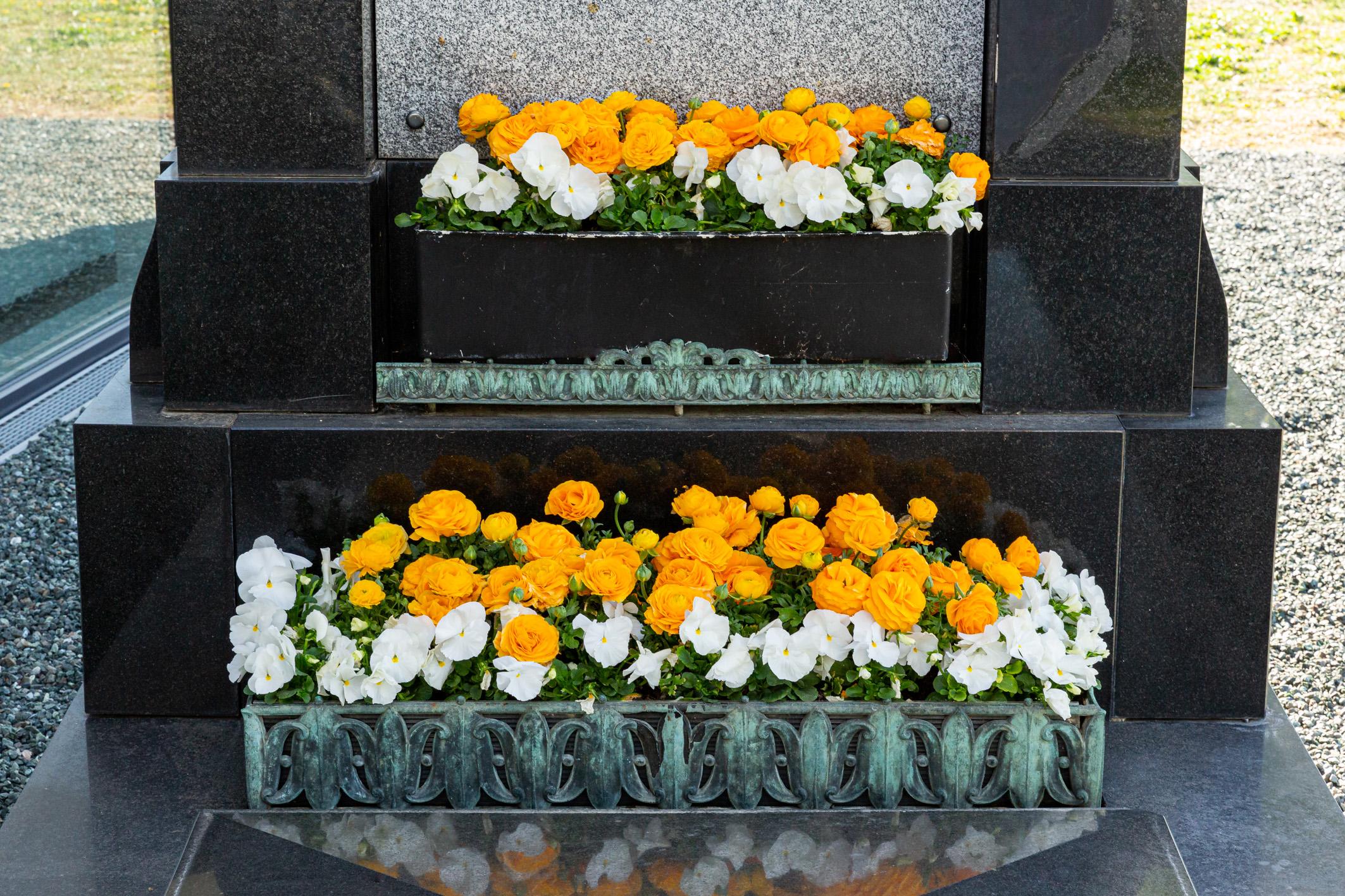 Jardiniere-Ranunkeln-und-Violen